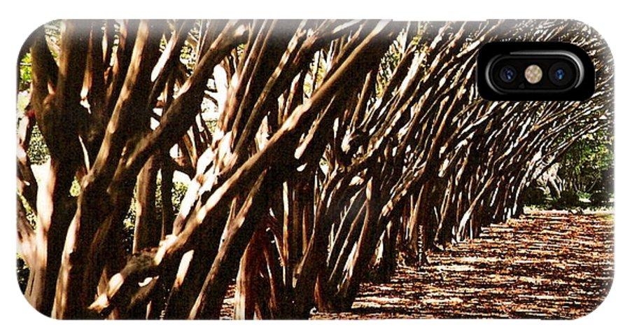 Passthu Left Dallas Arboretum IPhone X Case featuring the photograph Passthru Left by Oscar Duran