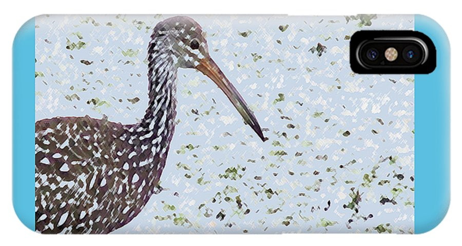 Bird IPhone X Case featuring the photograph Pastel Limpkin by Mike Mullins