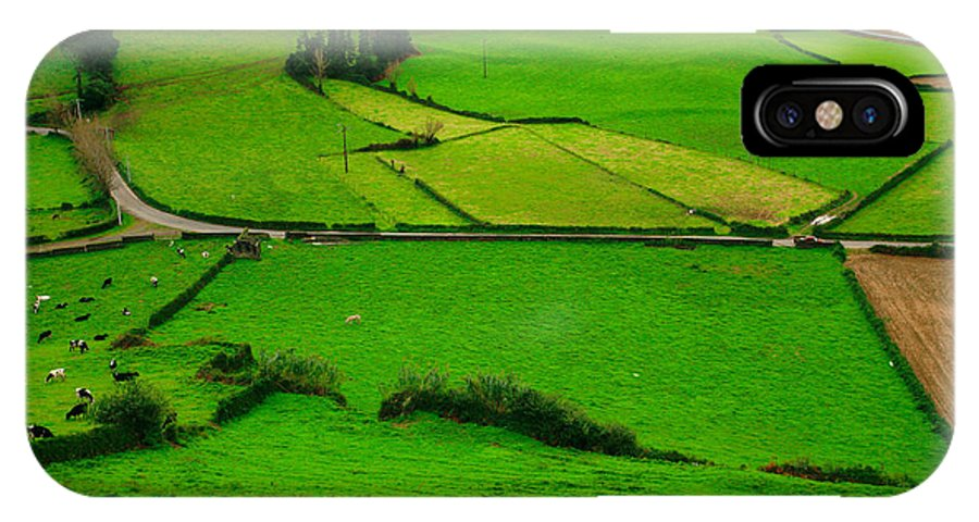 Dairy IPhone Case featuring the photograph Pastures In The Azores by Gaspar Avila
