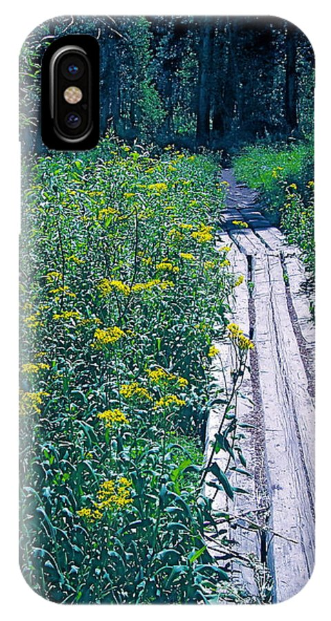 Nature IPhone X Case featuring the photograph Path 4 by Pamela Cooper