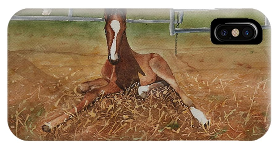 Colt IPhone X Case featuring the painting Pavlo's First Day by Ruth Kamenev