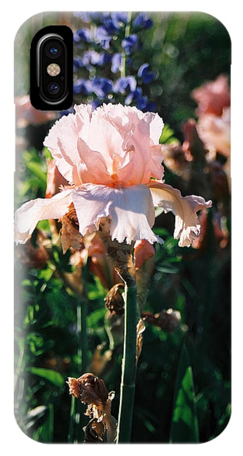 Flower IPhone Case featuring the photograph Peach Iris by Steve Karol