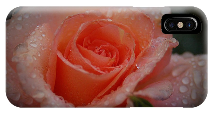 Rose IPhone X Case featuring the photograph Peaches And Cream by Sheila McDowell