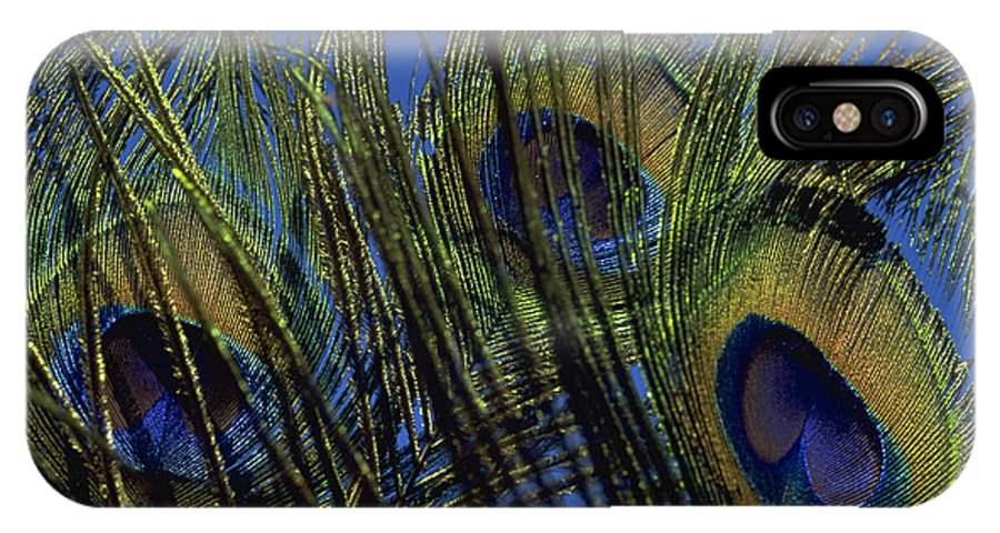 Feather IPhone Case featuring the photograph Peacock Feathers by Michael Mogensen