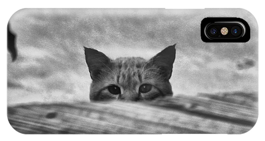 Cat IPhone X Case featuring the photograph Peek A Boo by Carole Martinez