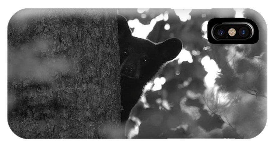 Black Bear IPhone X Case featuring the photograph Peek A Boo by David Lee Thompson