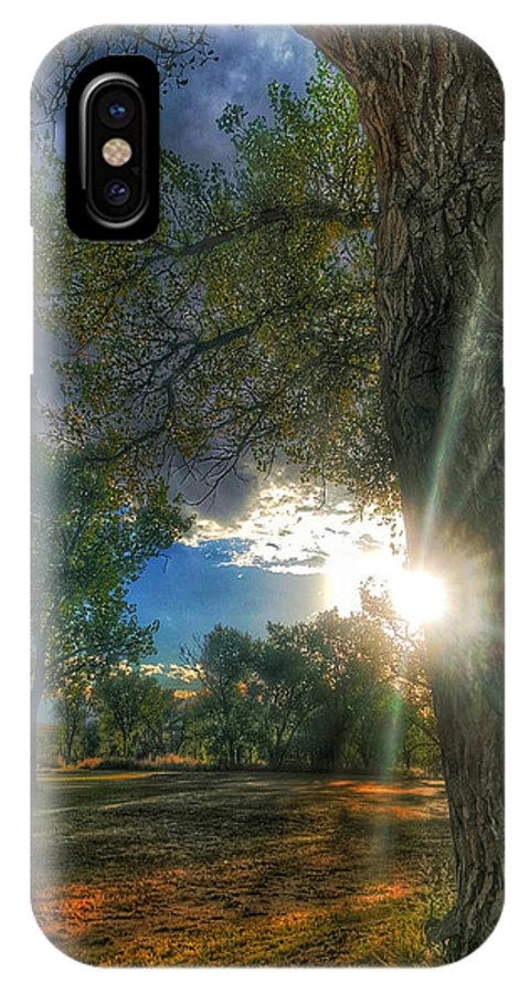 Nature IPhone X Case featuring the photograph Peekaboo Tree by Tim Abshire