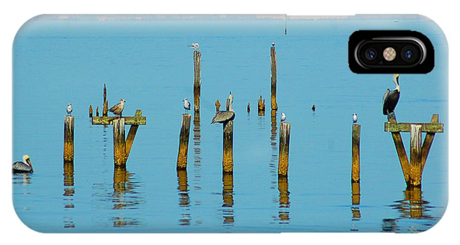 Pelican IPhone X Case featuring the digital art Pelican And Mobile by Michael Thomas