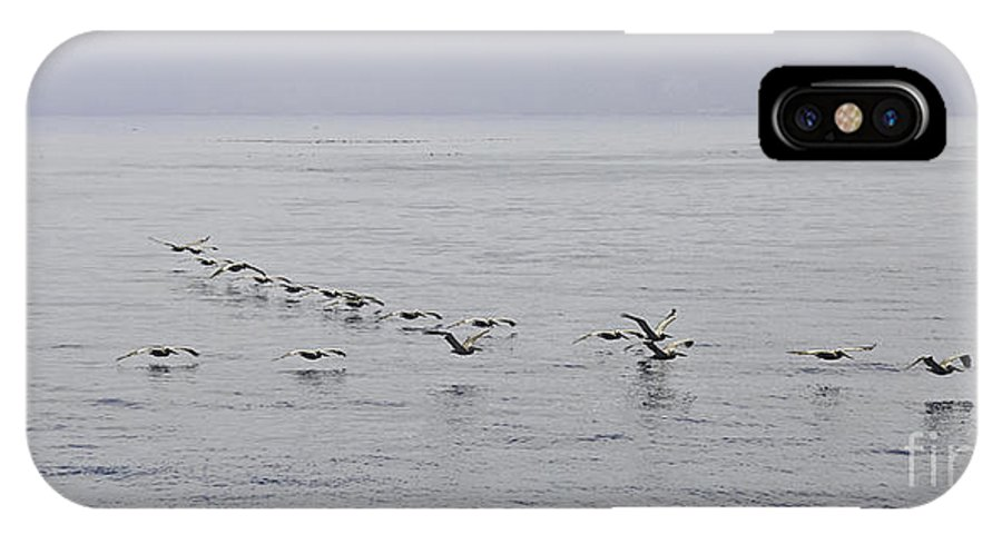 Pelican IPhone X / XS Case featuring the photograph Pelican Formation by Tim Hauf