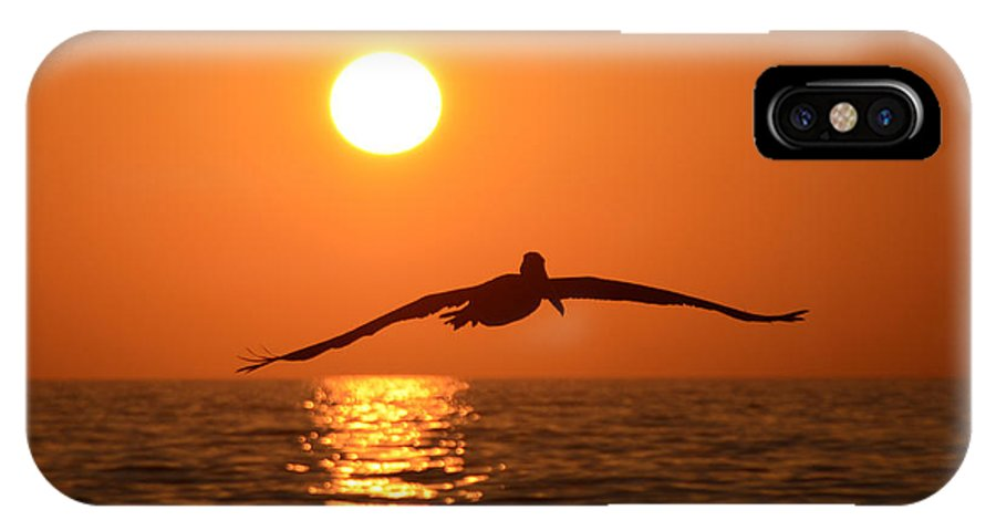 Fine At Photography IPhone X Case featuring the photograph Pelican Sunset by David Lee Thompson