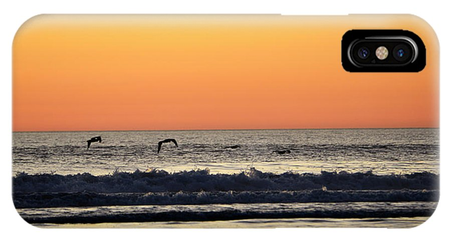 Denise Bruchman IPhone X Case featuring the photograph Pelican Sunset by Denise Bruchman