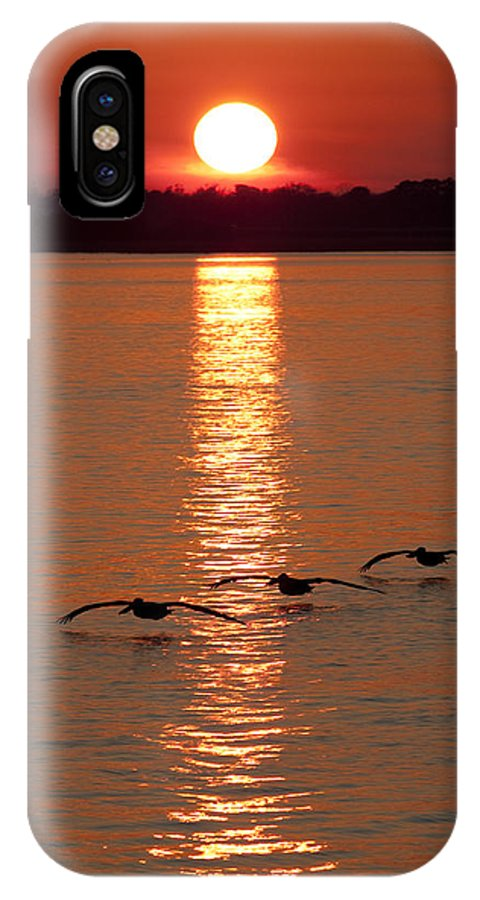 Pelicans IPhone X Case featuring the photograph Pelican Sunset by Dustin K Ryan