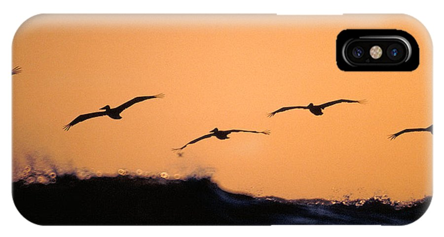 Pelicans IPhone X Case featuring the photograph Pelicans Over The Pacific by Michael Mogensen