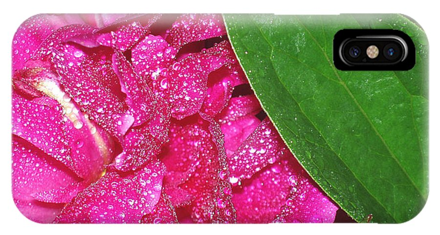 Peony IPhone X Case featuring the photograph Peony And Leaf by Nancy Mueller