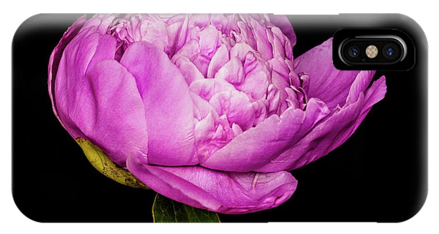 Peony IPhone X Case featuring the photograph Peony I by Mike Valdez