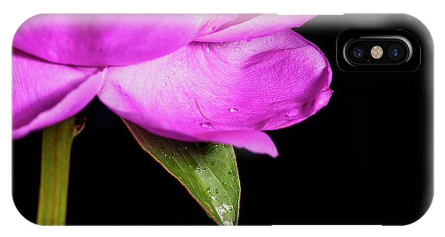 Flower IPhone X Case featuring the photograph Peony IIi by Mike Valdez