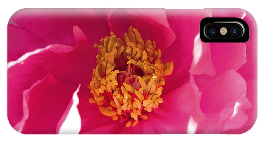 Peony IPhone X Case featuring the photograph Peony by Wendy Raatz Photography