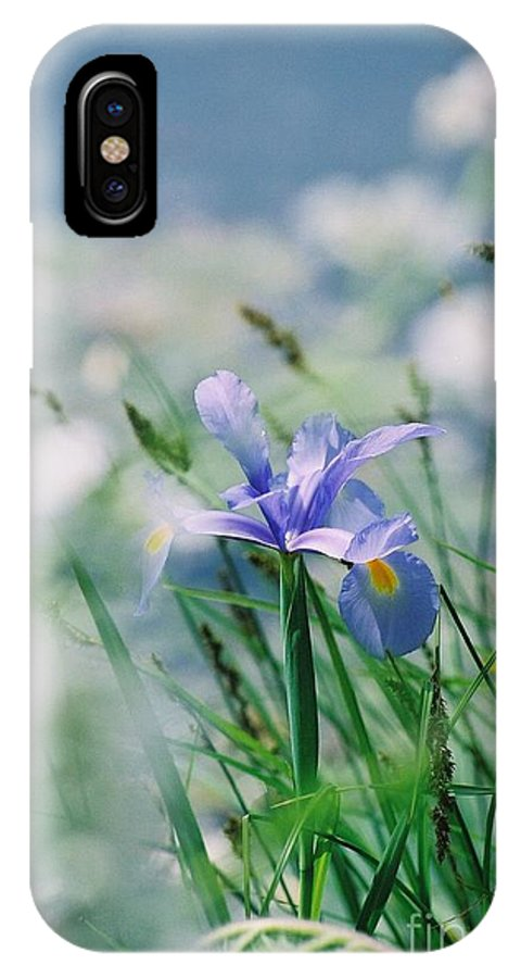 Periwinkle IPhone X Case featuring the photograph Periwinkle Iris by Nadine Rippelmeyer