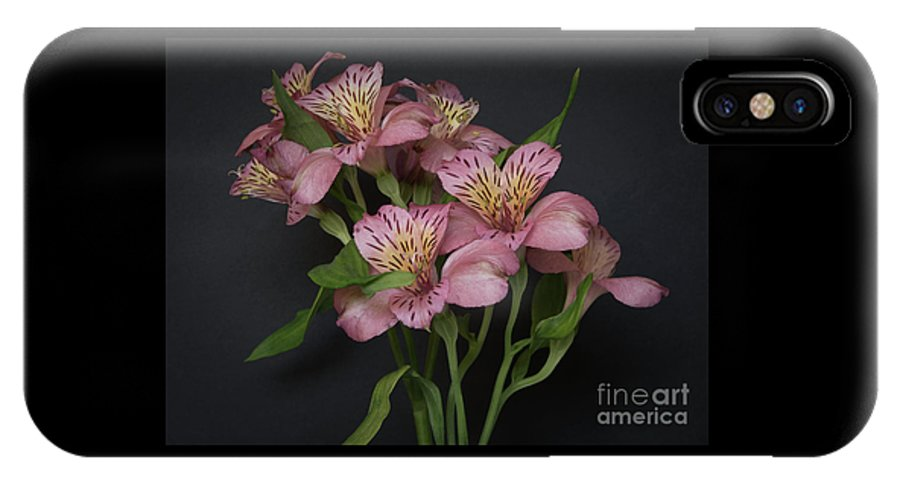 Flowers IPhone X / XS Case featuring the photograph Peruvian Lily by Ann Horn