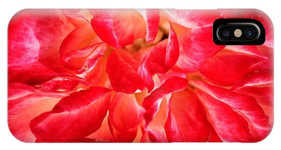 Joy Watson IPhone X Case featuring the photograph Petals Of Rose by Joy Watson