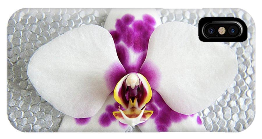 Nature IPhone X Case featuring the photograph Phalaenopsis Yu Pin Panda by Julia Hiebaum
