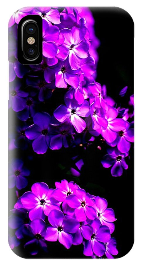 Digital Photograph IPhone X Case featuring the photograph Phlox 1 by David Lane