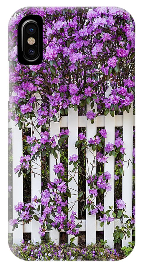 Spring IPhone X Case featuring the photograph Picket Fence Rhododendron by Alan L Graham