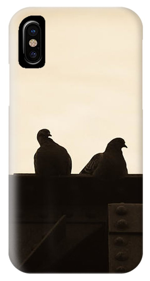 Silhouettes IPhone X Case featuring the photograph Pigeon And Steel by Bob Orsillo