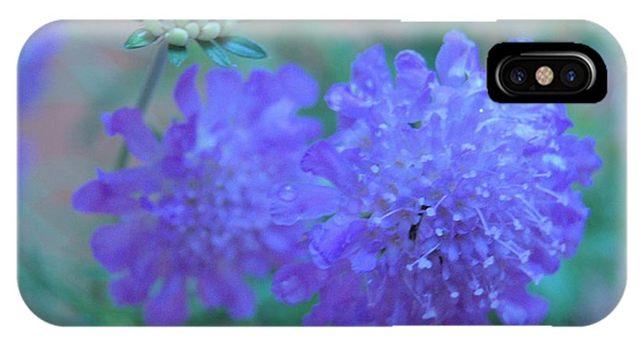 Butterfly IPhone X Case featuring the photograph Pin Cushion Flower by Wendy Fox
