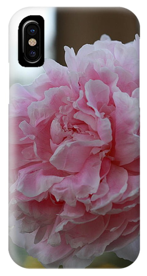 Flower IPhone X Case featuring the photograph Pin Cushion by Paul Slebodnick