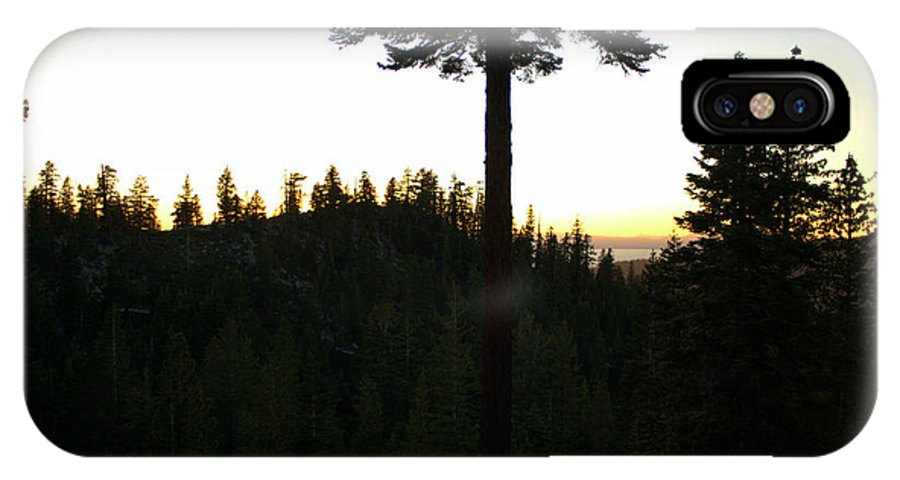Pine IPhone X Case featuring the photograph Pine Tree Hill Sunset by Randy Wehner Photography