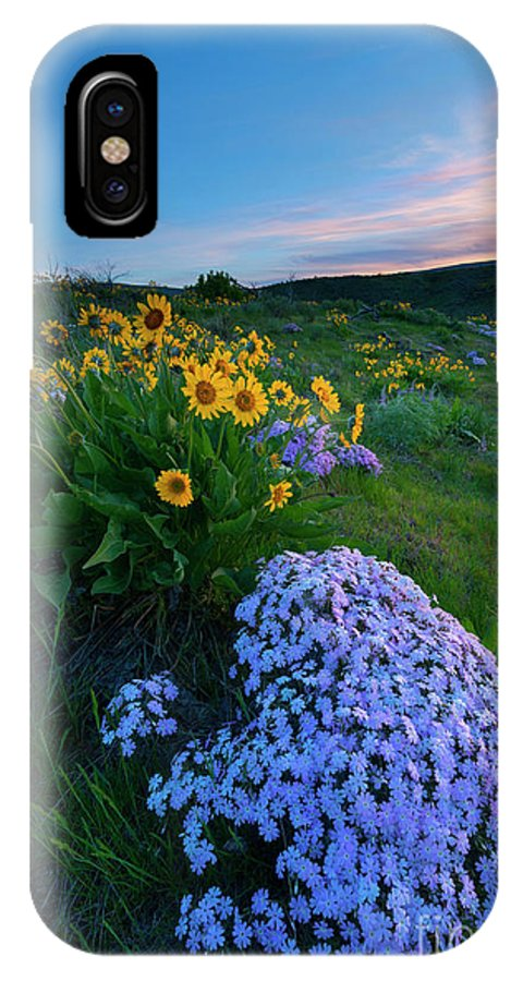 Phlox IPhone X Case featuring the photograph Pink And Yellow Sunset by Mike Dawson