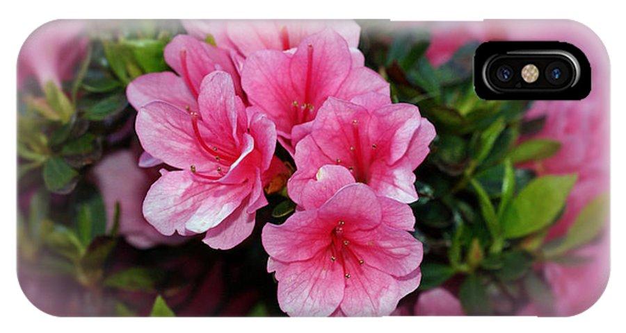 Azaleas IPhone X Case featuring the photograph Pink Azaleas by Sandy Keeton