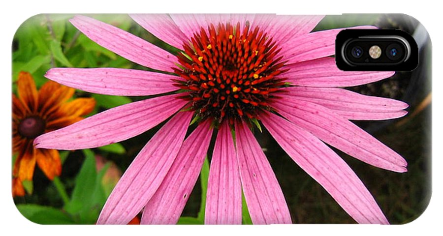Flower IPhone Case featuring the photograph Pink Beauty by Melissa Parks