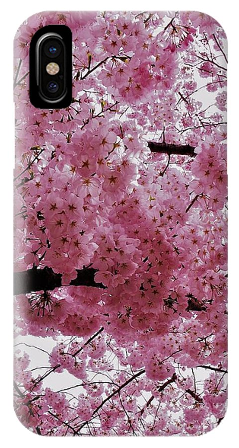 Pink Canopy IPhone X Case featuring the photograph Pink Canopy by Patti Whitten