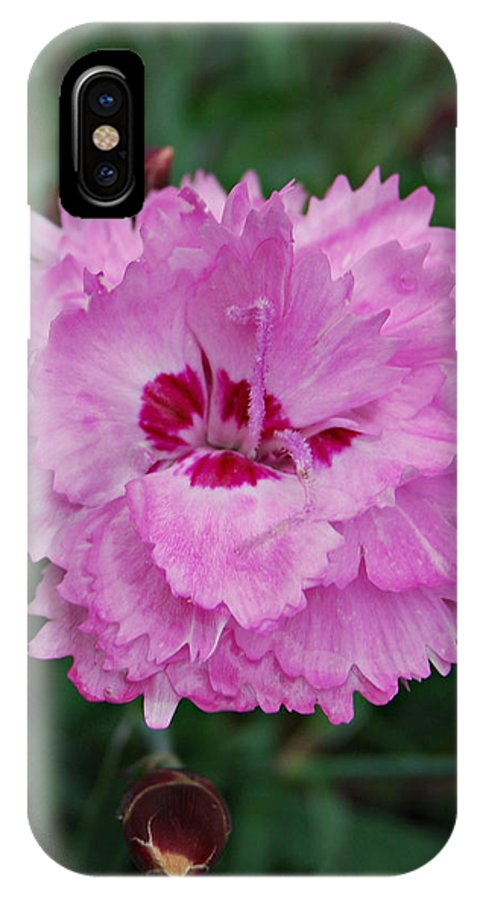 Pink IPhone X Case featuring the photograph Pink Carnation by Nancy Trevorrow