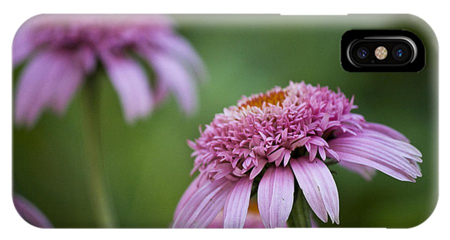 Pink IPhone X Case featuring the photograph Pink Double Delight by Teresa Mucha