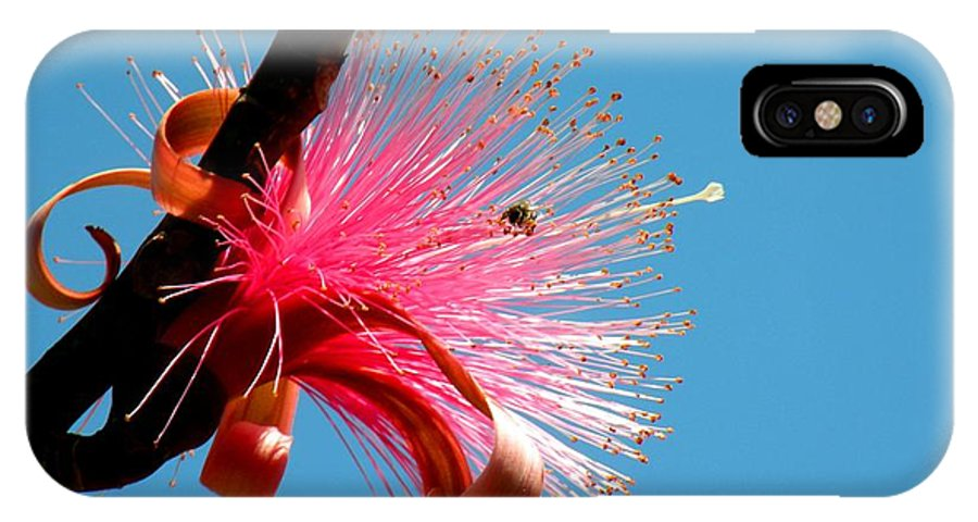 Flower IPhone X Case featuring the photograph Pink Explosion by Rosalie Scanlon