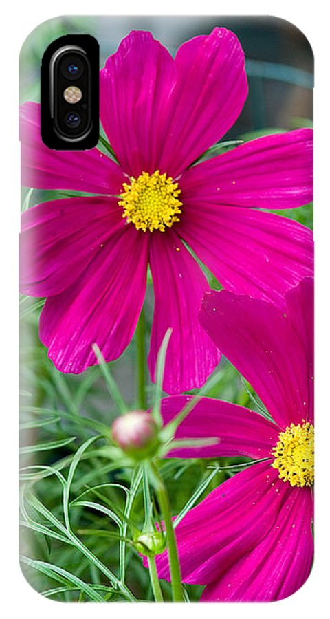 Pink IPhone X Case featuring the photograph Pink Flower by Michael Bessler