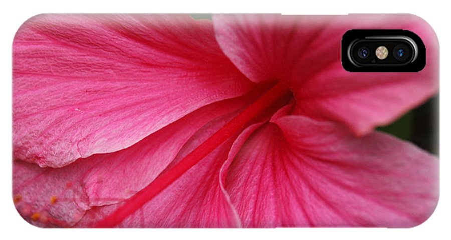 Pink IPhone X / XS Case featuring the photograph Pink Hibiscus by Kathy Schumann