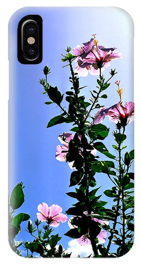Hibiscus Hawaii Pink Backlit Green Foliage Leaves Tropical Flower Print Blue Sky Bright Midday Sun IPhone X Case featuring the photograph Pink Hibiscus by Kevin Smith