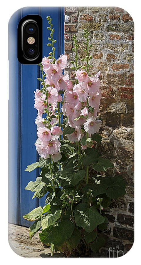 Pink IPhone X Case featuring the photograph Pink Hollyhocks Growing From A Crack In The Pavement by Louise Heusinkveld
