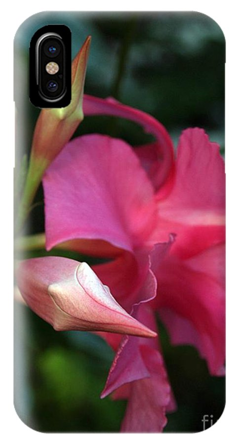 Flower IPhone X Case featuring the photograph Pink Mandevilla Bud And Flower by Anna Lisa Yoder