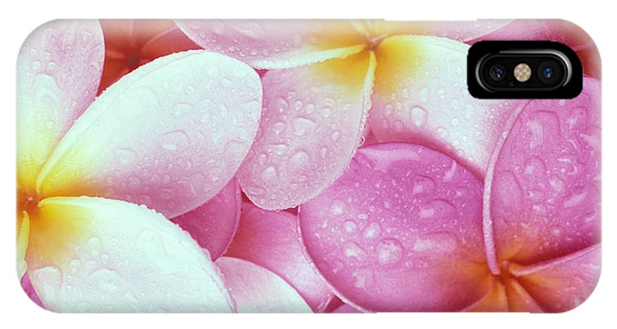 Aloha IPhone X Case featuring the photograph Pink Plumeria by Carl Shaneff - Printscapes
