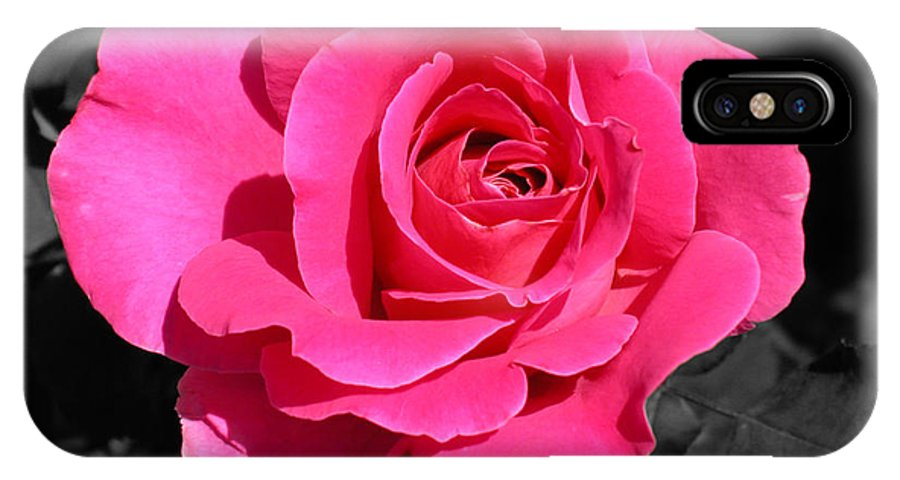 Pink IPhone X Case featuring the photograph Perfect Pink Rose by Michael Bessler