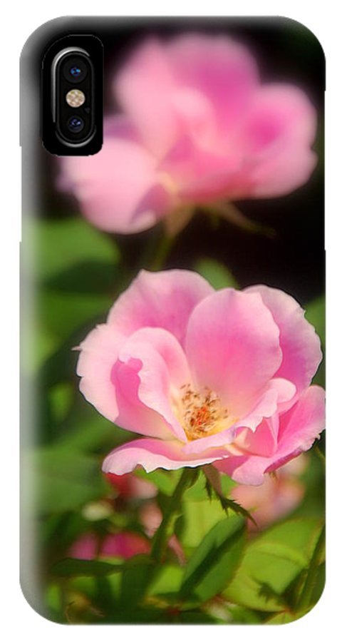 Pink Rose IPhone X Case featuring the photograph Pink Rose by Susanne Van Hulst