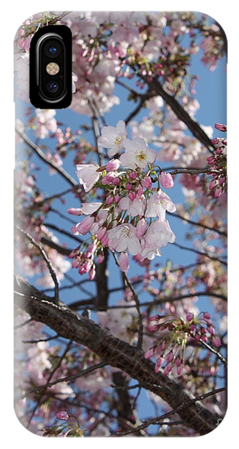 Spring IPhone X Case featuring the photograph Pink Spring Blossoms by Carol Groenen
