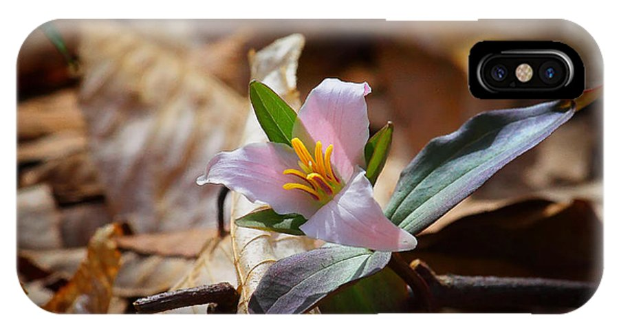 Trillium IPhone X Case featuring the photograph Pink Trillium In Lost Valley by Michael Dougherty