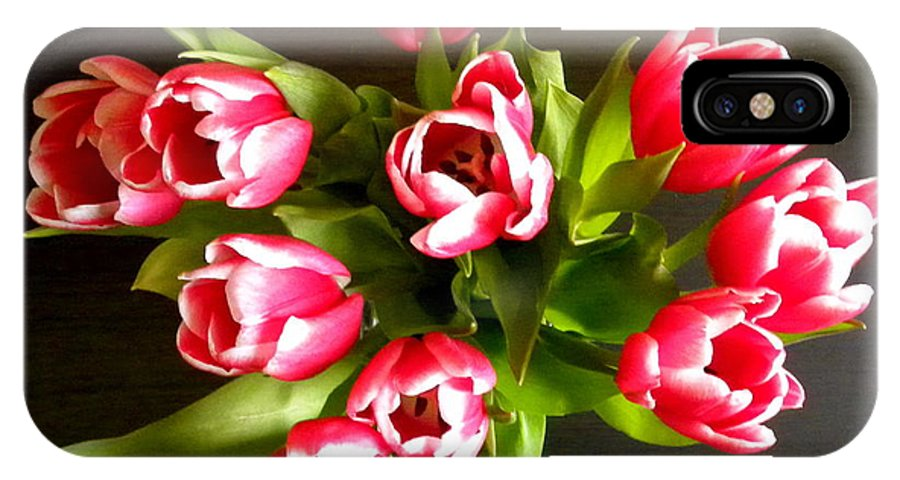 Tulips IPhone X Case featuring the photograph Pink Tulips by Fanny Diaz