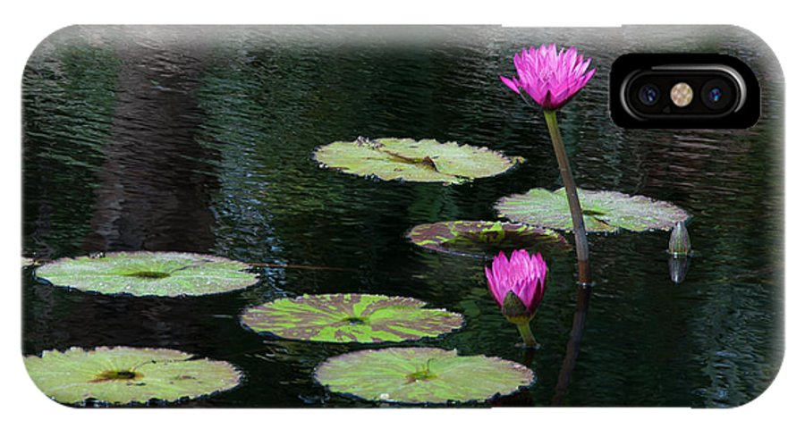 Pink Magenta Flower Water Lily IPhone X Case featuring the photograph Pink Waterlillies by Carolyn Dalessandro